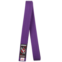 Jiu Jitsu Belt - Purple